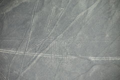 La vue aérienne de Nazca raye - poursuivez le geoglyph, Pérou Photo stock