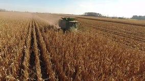 La vue aérienne du bourdon 4k sur le cartel énorme d'agriculture troque des véhicules de machines moissonnant le blé organique de banque de vidéos