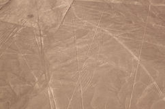 La vue aérienne du Nazca raye - le condor Image stock