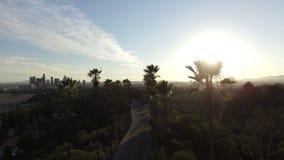 La vue aérienne du soleil de scintillement sur le palmier a rayé la route clips vidéos