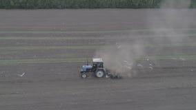 La vue aérienne du tracteur monte à travers le champ et les jeunes plantes de psilosis banque de vidéos