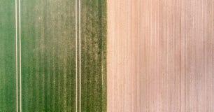 La vue aérienne verticale d'un champ avec le vert poussant la jeune végétation et un jaune ungreen la surface de champ, impressio image stock