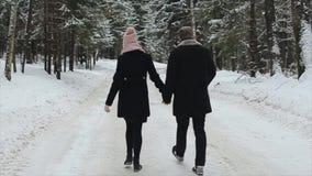 La vue arrière de jeunes et beaux couples marche chez l'homme et la femme de Milennials de forêt d'hiver ayant l'amusement L'hive banque de vidéos