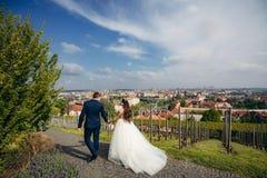 La vue arrière de la promenade de beaux couples gais de nouveaux mariés tenant des mains Panorama de Prague Photo libre de droits