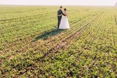 La vue arrière de la promenade des nouveaux mariés dans le domaine Photographie stock