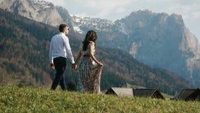 La vue arrière des couples tenant des mains et marchant dans les montagnes banque de vidéos