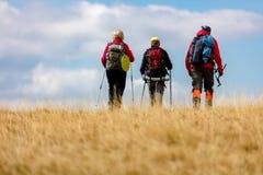La vue arrière a tiré de jeunes amis dans la campagne pendant la hausse de vacances d'été Groupe de randonneurs marchant dans la  Photos stock