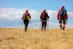 La vue arrière a tiré de jeunes amis dans la campagne pendant la hausse de vacances d'été Groupe de randonneurs marchant dans la  Photos libres de droits
