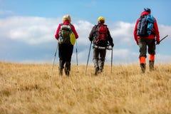 La vue arrière a tiré de jeunes amis dans la campagne pendant la hausse de vacances d'été Groupe de randonneurs marchant dans la  Photographie stock libre de droits
