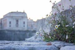 La vue au-dessus de Vatican, Rome Photos stock