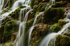 La vue détaillée d'un beau cristal a arrosé la cascade dans la forêt Images libres de droits