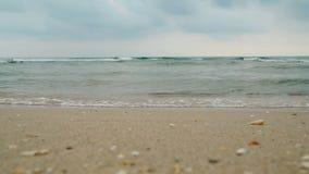 La vue d'angle faible de la mer ondule le roulement à terre clips vidéos