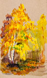 La vue d'automne avec le jaune laisse le bouleau illustration libre de droits