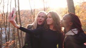 La vue de côté des amies de multirace prenant les selfies drôles en parc d'automne banque de vidéos