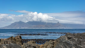 La vue de Cape Town et de la montagne de Tableau de l'île de Robben Photo stock