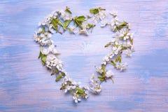 La vue de coeur du ressort fleurit sur le fond du vieux vintage b Photo stock