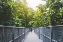 La vue de la jeune femme marchant sur la promenade de ciel et apprécient chez Chiangmai M images libres de droits