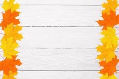La vue de l'érable d'automne part sur un fond et un espace en bois blancs pour le texte Images libres de droits