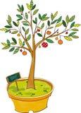 La vue de l'arbre fruitier illustration stock