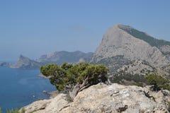 La vue de la montagne vers la mer Photographie stock libre de droits