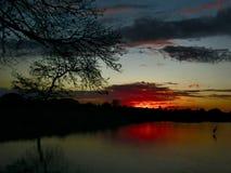 La vue de lac Photos libres de droits