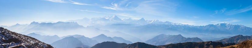 La vue de panorama sur des bétail soutiennent la montagne Photographie stock