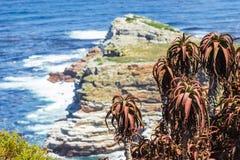 Montagne rocheuse à côté de l'océan image libre de droits