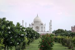 La vue de Taj Mahal de Mehtab Bagh fait du jardinage photographie stock