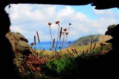 La vue de Tintagel Photographie stock