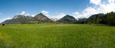 La vue des montagnes et des prés images libres de droits