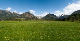 La vue des montagnes et des prés photo stock