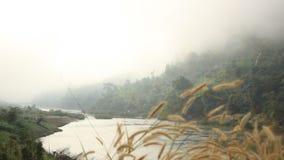 La vue du beau brouillard de matin circulant sur le Salween les déchirent banque de vidéos