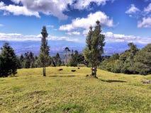 La vue du Costa Rica des poas volcan traînent image libre de droits