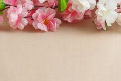 La vue du ressort fleurit sur un en bois, avec l'espace pour le thème des textes, de ressort ou d'été Photo libre de droits
