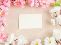 La vue du ressort fleurit sur un en bois, avec l'espace pour le thème des textes, de ressort ou d'été Photographie stock libre de droits
