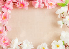La vue du ressort fleurit sur un en bois, avec l'espace pour le thème des textes, de ressort ou d'été Photographie stock