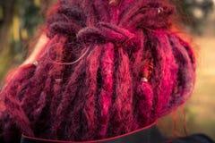 La vue en gros plan des cheveux pourpres a dénommé le rasta Images libres de droits