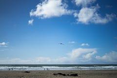 La vue en plage d'océan, plage d'océan, San Francisco Photos libres de droits
