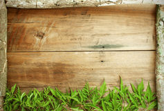 La vue est faite de bois et part Photographie stock libre de droits