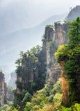 La vue fantastique des arbres s'élevant sur l'avatar de falaises raides bascule images stock