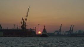 La vue magnifique du coucher du soleil L'usine est placée sur la berge clips vidéos