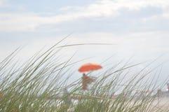 La vue mate de la plage et du maître nageur par l'herbe Photographie stock