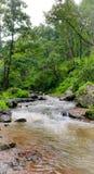 La vue naturelle de la rivière de narmada traverse sauvage images libres de droits