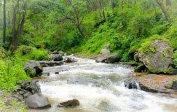 La vue naturelle de la rivière de narmada traverse sauvage images stock
