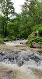 La vue naturelle de la rivière de narmada traverse sauvage photos stock