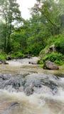 La vue naturelle de la rivière de narmada traverse sauvage photo stock