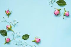 La vue supérieure des roses roses et du vert part au-dessus du fond bleu Abrégez le fond floral Copiez l'espace image stock
