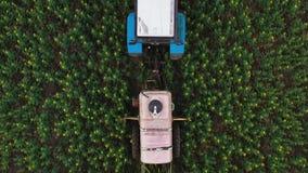 La vue supérieure du tracteur traite les usines agricoles sur le champ clips vidéos