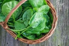 La vue supérieure sur un détail sur des épinards frais part dans un baske en osier Photo stock