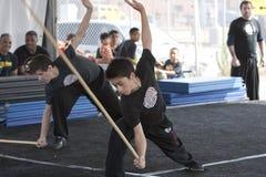 LA Wushu Royalty Free Stock Images